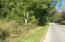 0 Poga Rd Road, Butler, TN 37640