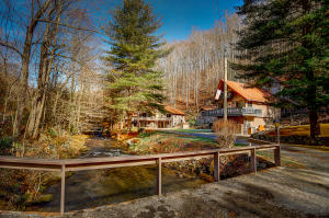 805 Tiger Creek Road, 1, Roan Mountain, TN 37687