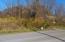 Tbd Lot 1 Coal Chute Road, Elizabethton, TN 37643