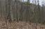 Tbd Hiddenwood Drive, Mountain City, TN 37683