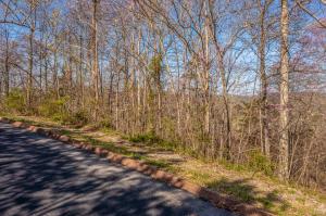 Lot 5 Shiloh Springs Road, Rutledge, TN 37861