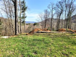 414 Eagle Ridge Road, Roan Mountain, TN 37687