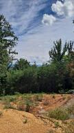0 English Ivy Trail, Jonesborough, TN 37659