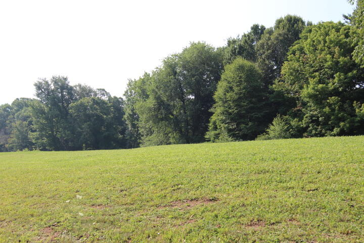1.45 ACRES  & TREES FOR PRIVACY!