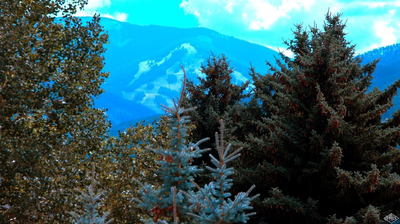 Proprty image for 228 W Beaver Creek BLVD