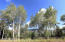 53 Forest Trail, Edwards, CO 81632