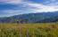 100 E Meadow Drive, 15, Vail, CO 81657