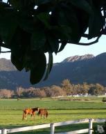 1200 Hidden Valley Road, Thousand Oaks, CA 91361