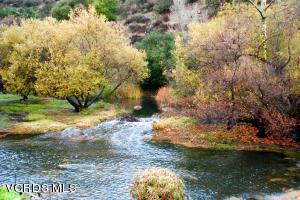 View of seasonal creek across the street.