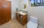 Main Level Guest/Hall bathroom
