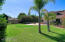 Partial photo of the huge backyard.