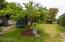 Back yard 3rd
