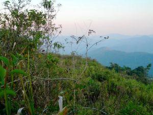 Terreno En Ventaen Caracas, Oripoto, Venezuela, VE RAH: 10-10089
