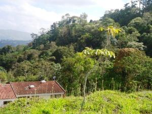 Terreno En Ventaen Municipio Guaicaipuro, Laguneta De Montaña, Venezuela, VE RAH: 13-1446