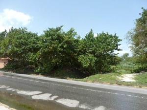 Terreno En Ventaen Higuerote, Higuerote, Venezuela, VE RAH: 13-4714