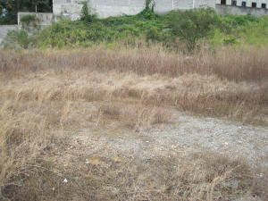 Terreno En Ventaen Guatire, Las Barrancas, Venezuela, VE RAH: 14-3077
