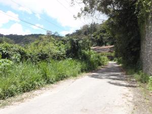 Terreno En Ventaen Caracas, Oripoto, Venezuela, VE RAH: 14-6183