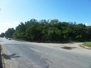 Terreno En Ventaen Higuerote, Higuerote, Venezuela, VE RAH: 15-13