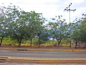 Terreno En Ventaen Punto Fijo, Punto Fijo, Venezuela, VE RAH: 15-2129