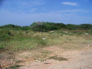 Terreno En Ventaen Higuerote, Higuerote, Venezuela, VE RAH: 15-2191