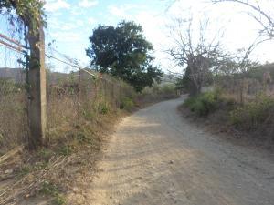 Terreno En Ventaen Villa De Cura, Villa Virginia, Venezuela, VE RAH: 15-3579