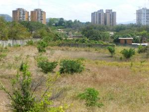 Terreno En Ventaen Valles Del Tuy, Santa Teresa Del Tuy, Venezuela, VE RAH: 15-6252