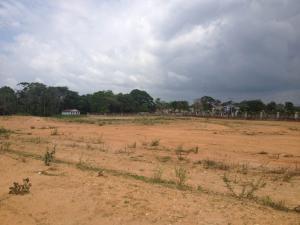 Terreno En Ventaen Tacarigua, Tacarigua, Venezuela, VE RAH: 15-8989