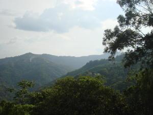 Terreno En Ventaen Municipio Guaicaipuro, Parcelaciones Madriz, Venezuela, VE RAH: 15-13254
