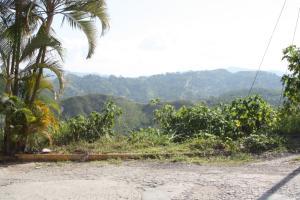 Terreno En Ventaen Caracas, Los Robles, Venezuela, VE RAH: 15-13306
