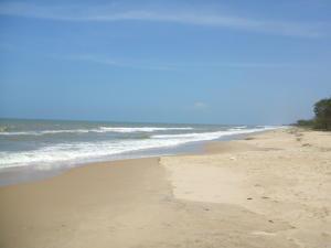 Terreno En Ventaen Cupira, Playa Pintada, Venezuela, VE RAH: 15-15487