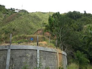 Terreno En Ventaen Caracas, Caicaguana, Venezuela, VE RAH: 16-1916