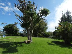 Terreno En Ventaen Carrizal, Llano Alto, Venezuela, VE RAH: 16-3083