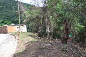 Terreno En Ventaen Caracas, Caicaguana, Venezuela, VE RAH: 16-6607