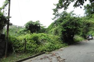 Terreno En Ventaen Caracas, Cerro Verde, Venezuela, VE RAH: 16-8974
