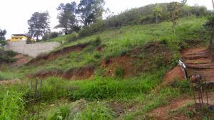 Terreno En Ventaen Caracas, El Hatillo, Venezuela, VE RAH: 16-9173