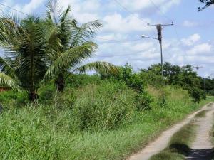Terreno En Ventaen Rio Chico, San Jose, Venezuela, VE RAH: 16-11681
