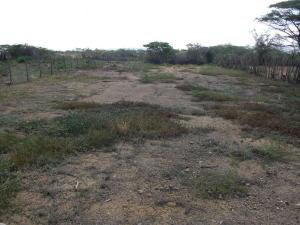Terreno En Ventaen Coro, Las Calderas, Venezuela, VE RAH: 16-14200