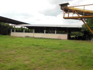 Terreno En Ventaen Santa Teresa, Centro, Venezuela, VE RAH: 16-16398