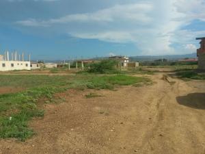Terreno En Ventaen Coro, La Paz, Venezuela, VE RAH: 16-18685