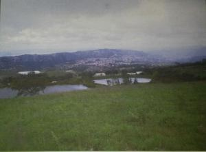 Terreno En Ventaen Sanare, Municipio Andres Eloy Blanco, Venezuela, VE RAH: 16-19879