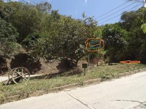 Terreno En Ventaen Caracas, Caicaguana, Venezuela, VE RAH: 17-499
