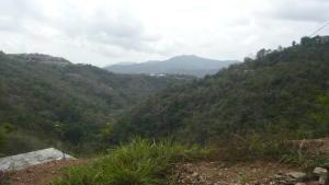Terreno En Ventaen Caracas, Caicaguana, Venezuela, VE RAH: 17-5832