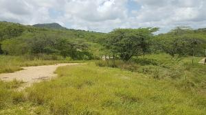 Terreno En Ventaen Piritu, Guamacho, Venezuela, VE RAH: 17-8844