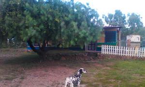 Casa En Ventaen Paso Real, Parroquia Diego Lozada, Venezuela, VE RAH: 17-10031