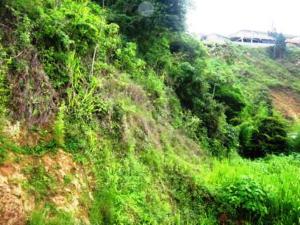 Terreno En Ventaen Caracas, Caicaguana, Venezuela, VE RAH: 17-11366