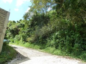 Terreno En Ventaen Caracas, La Boyera, Venezuela, VE RAH: 17-13531