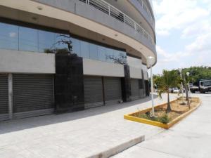 Local Comercial En Ventaen Maracay, San Jacinto, Venezuela, VE RAH: 17-13977