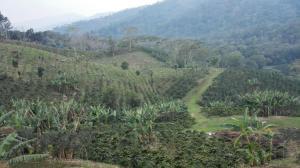 Terreno En Ventaen Barquisimeto, El Manzano, Venezuela, VE RAH: 17-14374