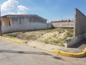 Terreno En Ventaen Cabudare, Los Samanes, Venezuela, VE RAH: 17-15304