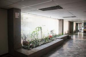 Apartamento En Ventaen Caracas, Los Palos Grandes, Venezuela, VE RAH: 18-501